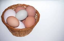 在篮子的新鲜的鸡蛋 免版税库存照片