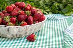 在篮子的新鲜草莓 免版税库存图片