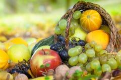 在篮子的有机果子在秋天草 免版税库存照片