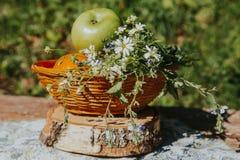 在篮子的有机苹果在夏天草 库存照片