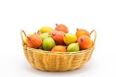 在篮子的未加工的槟榔子在白色背景 免版税库存照片