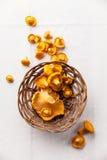 在篮子的未加工的野生蘑菇黄蘑菇 免版税库存照片