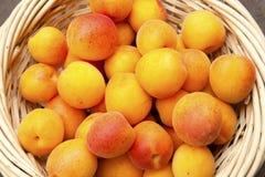 在篮子的杏子 库存照片