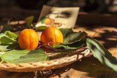 在篮子的杏子 免版税库存照片