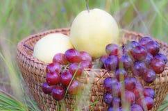 在篮子的果子 免版税图库摄影