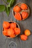 在篮子的橙色酸浆 免版税库存照片