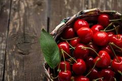 在篮子的欧洲酸樱桃 图库摄影
