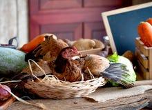在篮子的母鸡用在菜中的各种各样的类型的鸡蛋在桌上的在厨房里 免版税库存照片