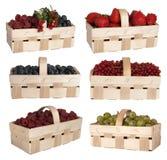在篮子的浆果 库存图片