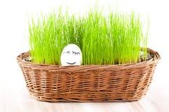 在篮子的滑稽的微笑的妇女鸡蛋与草。 星期日浴。 免版税库存图片
