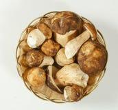 在篮子的牛肝菌蕈类可食国王牛肝菌 免版税图库摄影