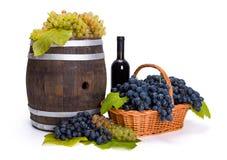 在篮子的白色和蓝色葡萄与桶 免版税库存图片