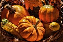 在篮子的秋天收获装饰蔬菜 库存照片