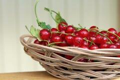 在篮子的红浆果莓果 免版税库存照片