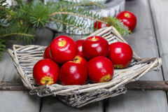 在篮子的红色苹果 传统圣诞节设置 免版税库存照片