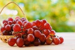 在篮子的红葡萄果子 图库摄影