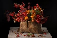 在篮子的花揪分支 库存照片