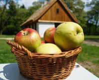 在篮子的苹果 图库摄影