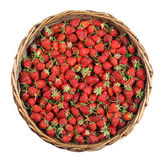 在篮子的草莓 库存照片