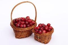 在篮子的莓果 免版税图库摄影