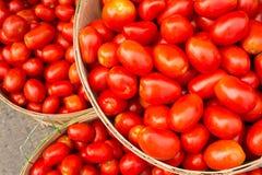 在篮子的许多罗马蕃茄 免版税库存图片