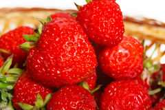 在篮子的许多草莓 库存照片