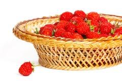 在篮子的许多草莓 免版税库存照片