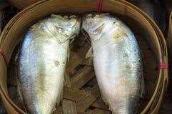 在篮子的鲭鱼鱼 免版税库存图片