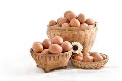 在篮子的鸡蛋在白色背景填装了隔绝 库存照片