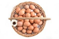在篮子的鸡蛋在白色背景填装了隔绝 免版税库存图片