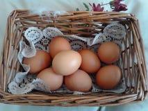 在篮子的鸡蛋 免版税库存图片