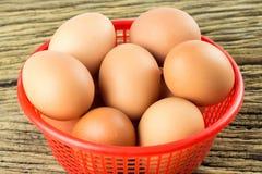 在篮子的鸡蛋 免版税库存照片