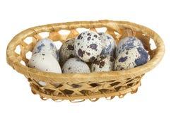 在篮子的鹌鹑蛋 库存照片