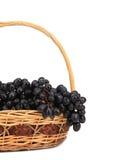 在篮子的黑和绿色葡萄。 免版税库存照片
