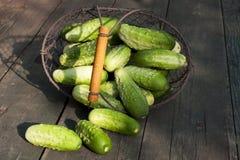 在篮子的黄瓜在老木桌上 免版税库存照片
