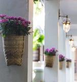 在篮子的紫色花在柱子 图库摄影