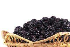 在篮子的黑莓。 免版税库存图片
