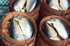 在篮子蒸的鲭鱼 图库摄影