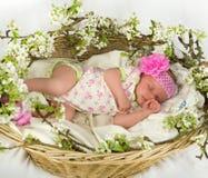 在篮子里面的女婴与春天开花。 免版税库存照片
