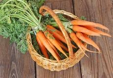 在篮子,选择聚焦的新鲜的有机红萝卜 库存照片