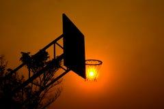 在篮球篮的太阳 免版税库存图片
