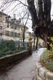 在篱芭、房子和一棵老树附近的道路 免版税库存照片