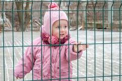 在篱芭后的小美丽的女孩婴孩,栅格在一个盖帽和一件夹克锁了激动哀伤的在他的面孔 库存图片