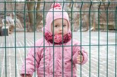在篱芭后的小美丽的女孩婴孩,栅格在一个盖帽和一件夹克锁了激动哀伤的在他的面孔 免版税图库摄影