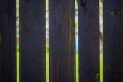 在篱芭后的庭院 图库摄影