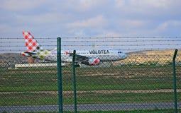 在篱芭后的维奥莱特航空公司 免版税库存照片