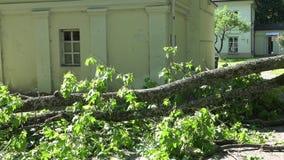 在篱芭和入口下落的重的树枝对住宅房子 股票视频