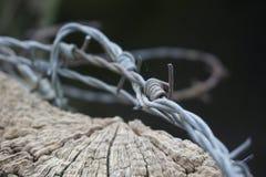 在篱芭岗位特写镜头的不整洁铁丝网 免版税库存图片