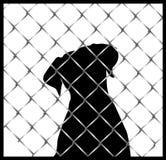在篱芭或笼子剪影里面的狗 免版税库存照片