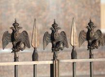 在篱芭的二重带头的老鹰 免版税图库摄影